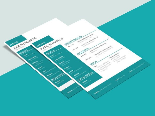 Free Modern Designer CV Template with Professional Layout