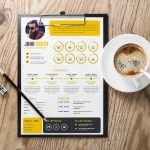 Stylish Infographic CV