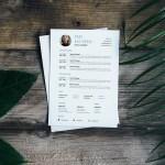 Entrepreneur Timeline Resume