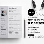 Simple Corporate Resume