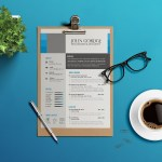 Clean and Modern Curriculum Vitae
