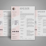 Universal Resume Template