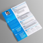 Vasilis Resume Template