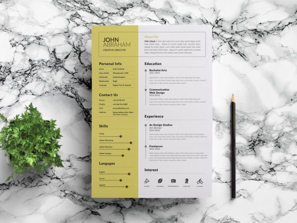 Free Minimalist Corporate Resume Template