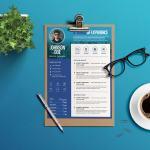 Professional Designer CV/Resume