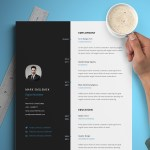 Vertical CV/Resume Template