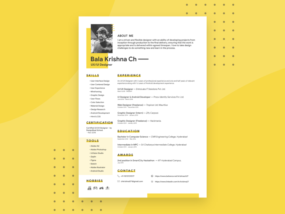 Free Adobe Xd Resume Template With Professional Look