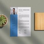 Gallery Director Resume