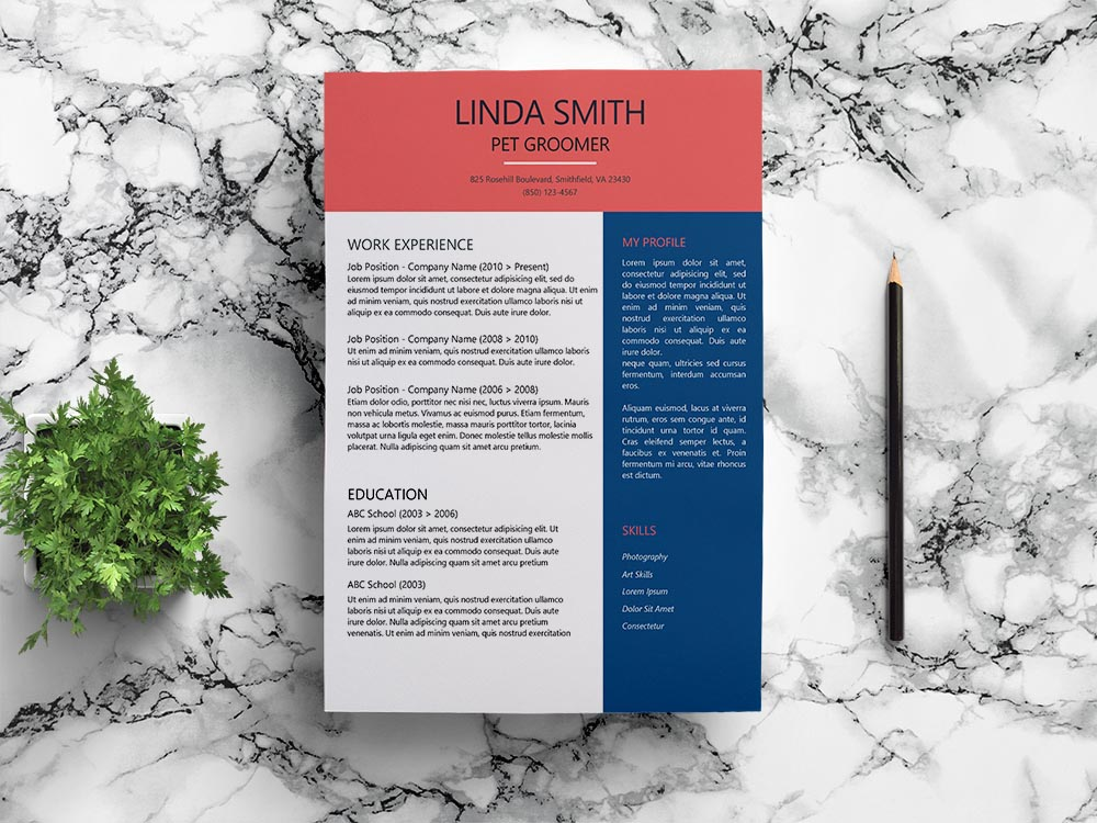 Free Pet Groomer Resume Template with Clean Look