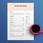 Credit Representative Resume