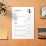 VP Of Finance Resume