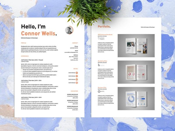 Free Editable Indesign CV Resume Template
