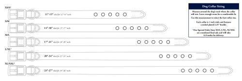 small resolution of dog collar sizing chart