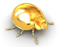Image result for gold bug