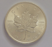 photo of a silver maple leaf coin back