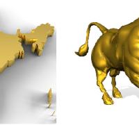 indian bull market
