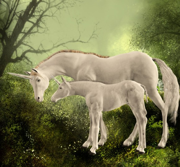 mother unicorn and foal