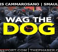 smaulgld sgt report wag the dog