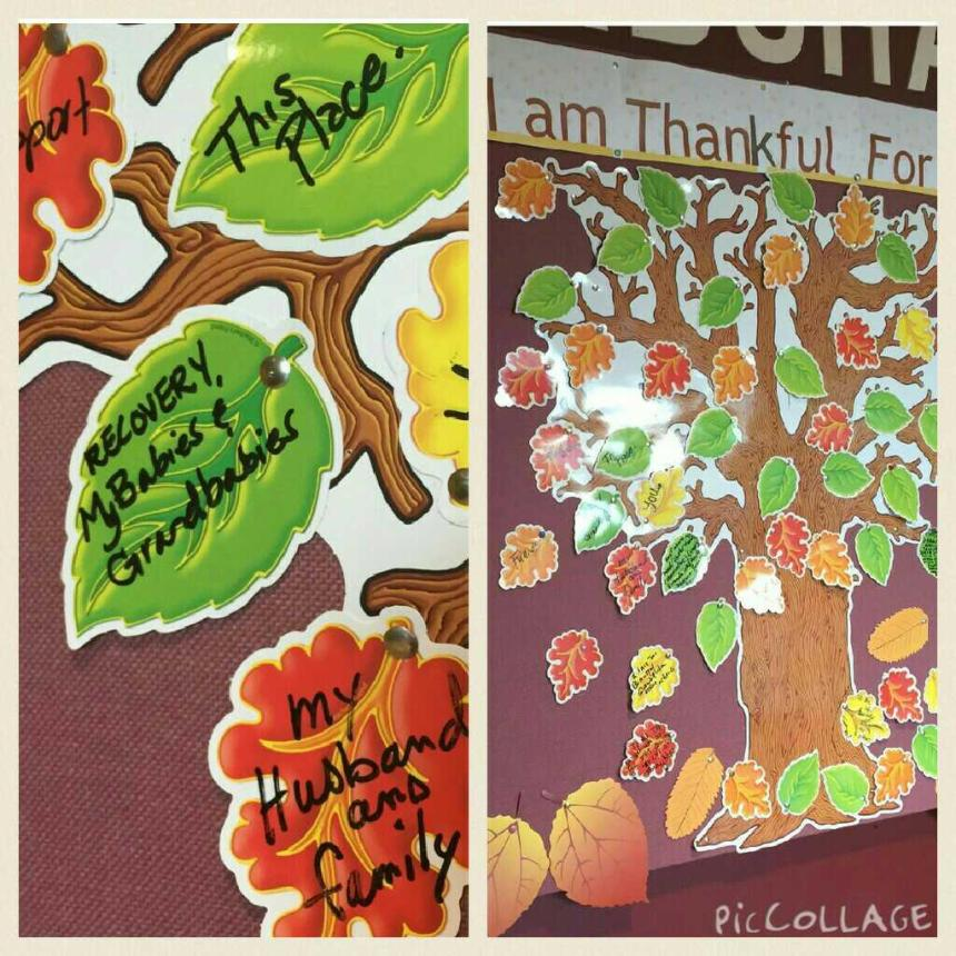 CCMH tree of thanks 2015