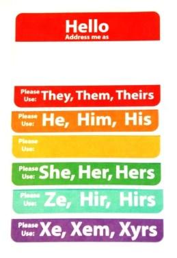 Gender Pronoun