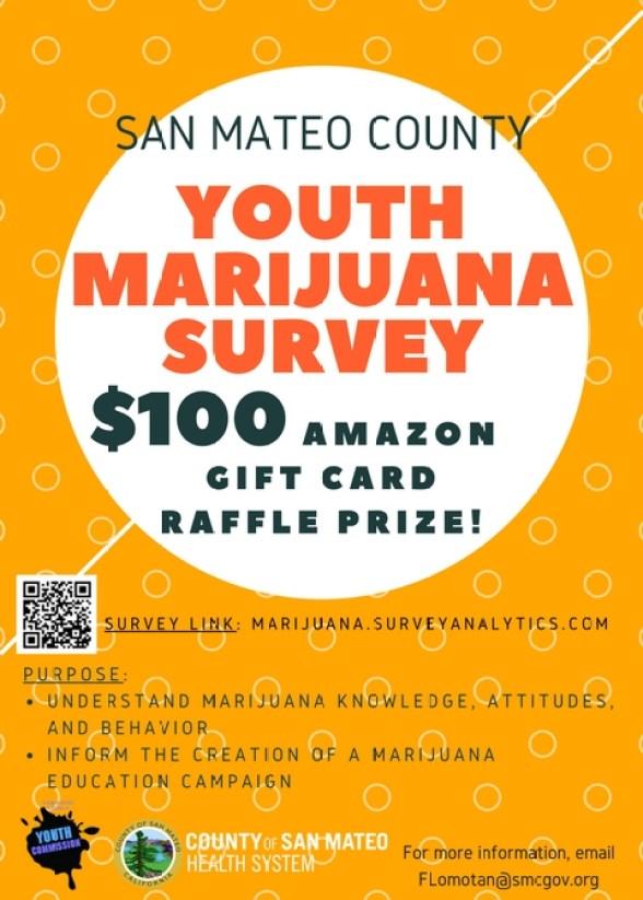 Survey Flyer