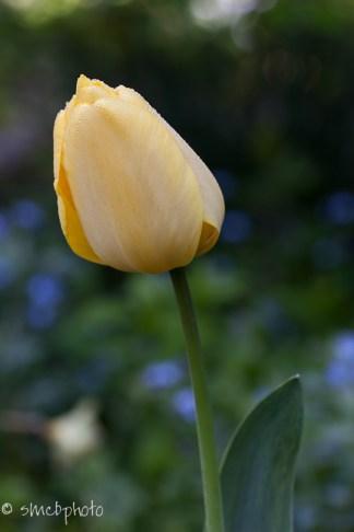 20121014-IMG_5037