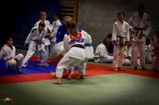 judolle-dag-zandhoven-7-januari-2017-132