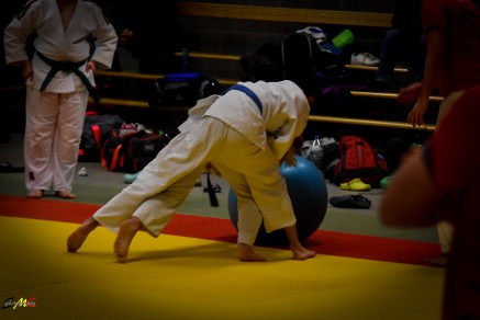 judolle-dag-zandhoven-7-januari-2017-67