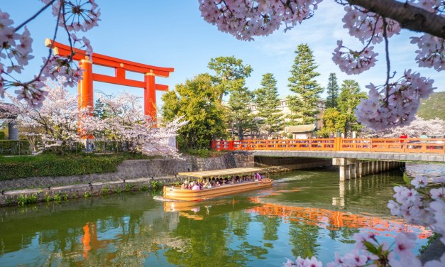 Know Your… Cherry Blossoms | Wanderlust