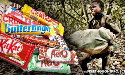 Nestle Says Requirement to Report Use of Slave Labor Would Cost Consumers More Money