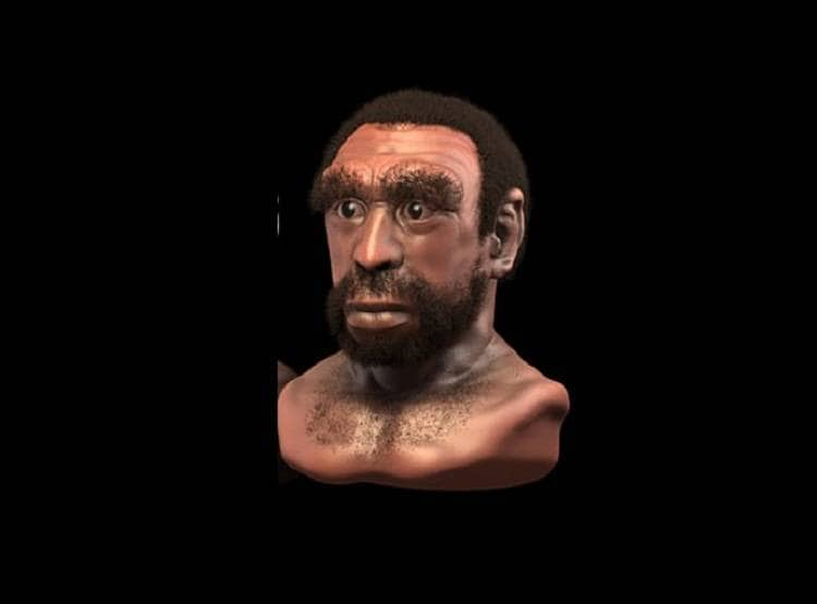 चपटी नाक, बड़ा कान, सिर्फ 3 दांत... एक लाख साल पहले ऐसे दिखते थे हम