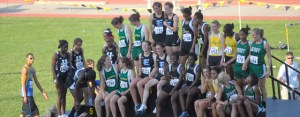 Boys' and girls' track and field finish strong at state meet