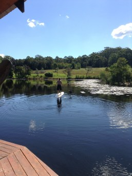 paddleboardng on the water lily lake - 2 hours later we were sprinting out of the wood fired sauna and diving in :)