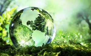 Cleantech Innovations by SME Sector for Environmental Agility Discussed by WWF
