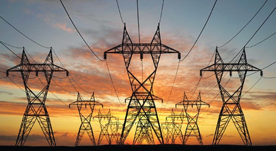Kalpataru Power Shares Slumped Due to World Bank's Report
