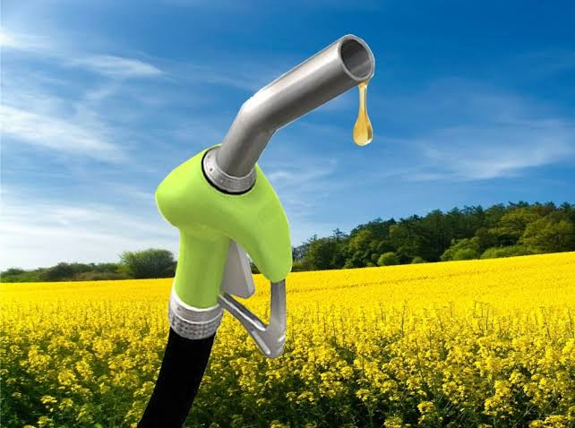 Used Cooking Oil for Bio-Diesel Production