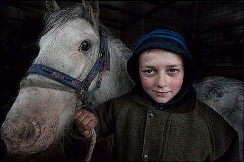 17 Young Horse Trader