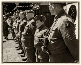 Home Guard Inspection