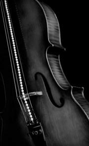 String of Perls