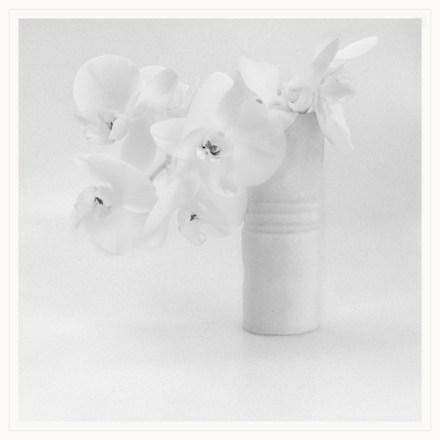 White on White_