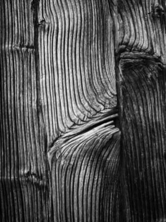 wood panel-1