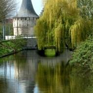Commended-Belgian River Reflactions-Harvey Bird