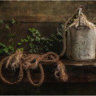 Highly Commended-The old watering can - Barbara Hawthorne