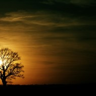 -Sunset Silhouette-Siddique Hussain