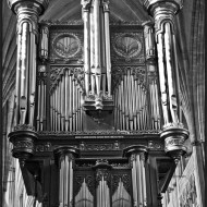 Commended-Exeter Cathedral Organ-Harvey Bird