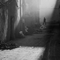 Second Moroccan Back Alley Lilliana Alani
