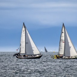 Commended Swiftsure Yacht Race 2 Anthony Timmins