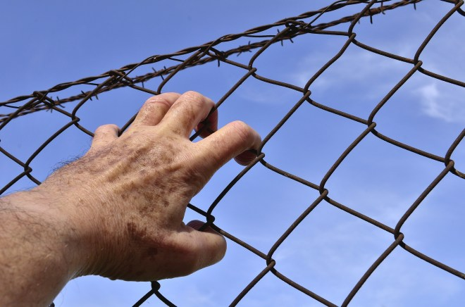 barbed-wire-1408454_1920