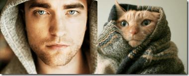 edwardcat