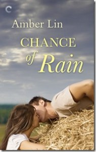 Review: Chance of Rain by Amber Lin